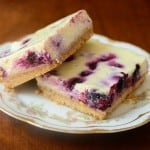 2012-04-15 Lemon Blueberry Cheesecake Bars 005