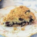 Blueberry-Crumb-Cake-087
