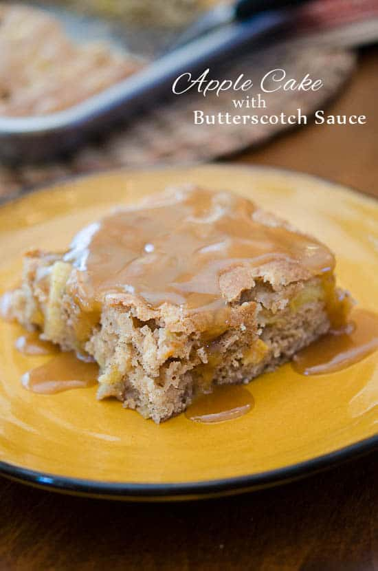 Apple Cake with Butterscotch Sauce-154 (titled)