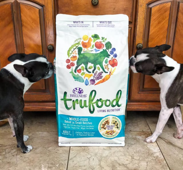 Take Your Dog to Work Day - Wellness TruFood