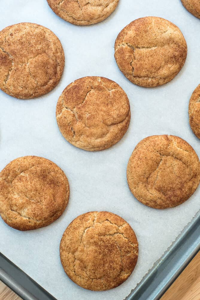Pumpkin Spice Snickerdoodles fresh from the oven. on a parchment paper lined baking sheet.