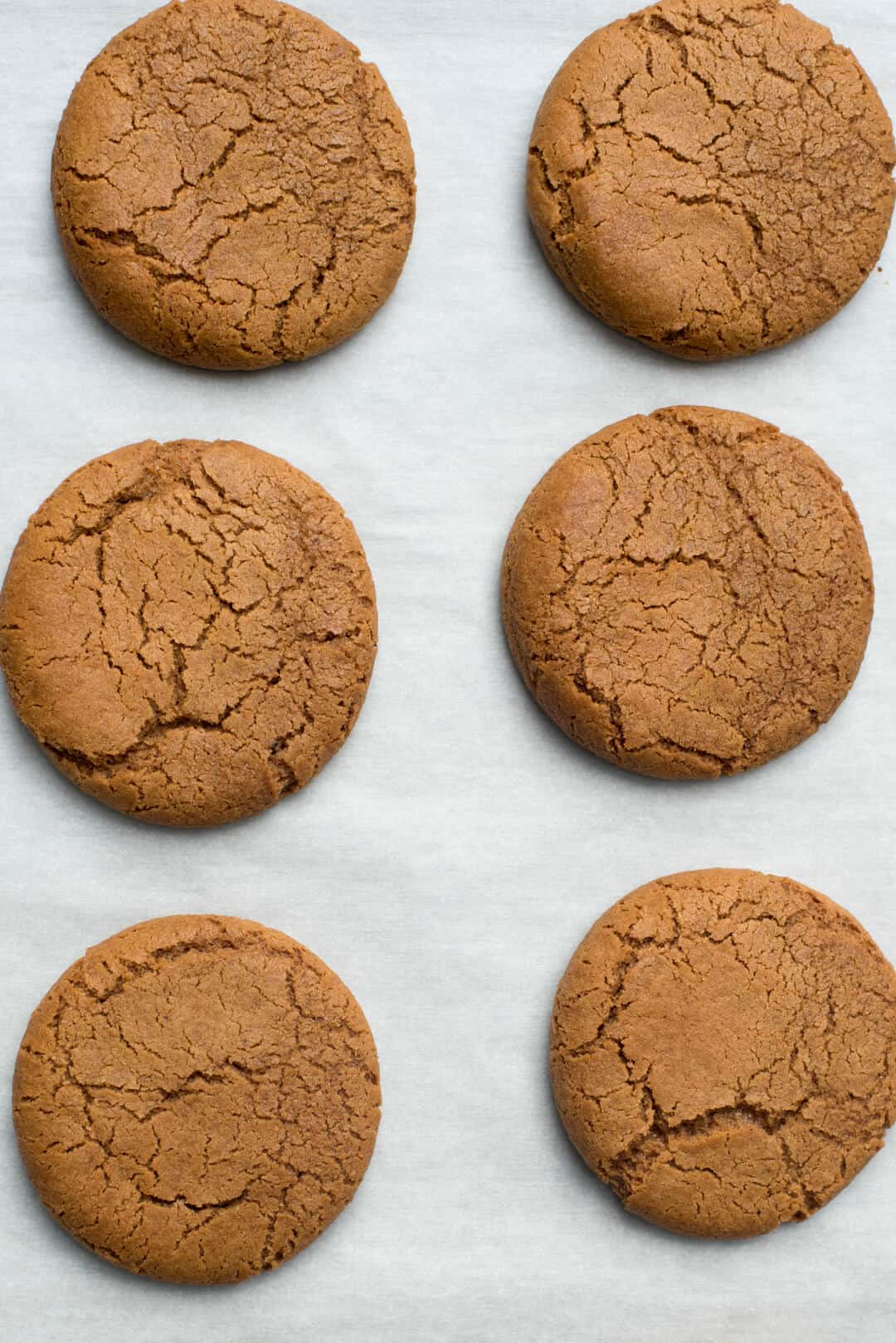 These Chewy Iced Molasses Cookies have a fabulous soft and chewy texture and are filled with the classic flavors of molasses, cinnamon, and ginger. A holiday classic!