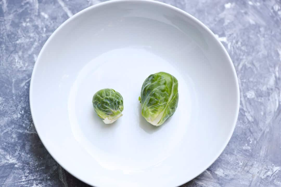 One small and one large Brussels sprout in a white dish to compare the size.