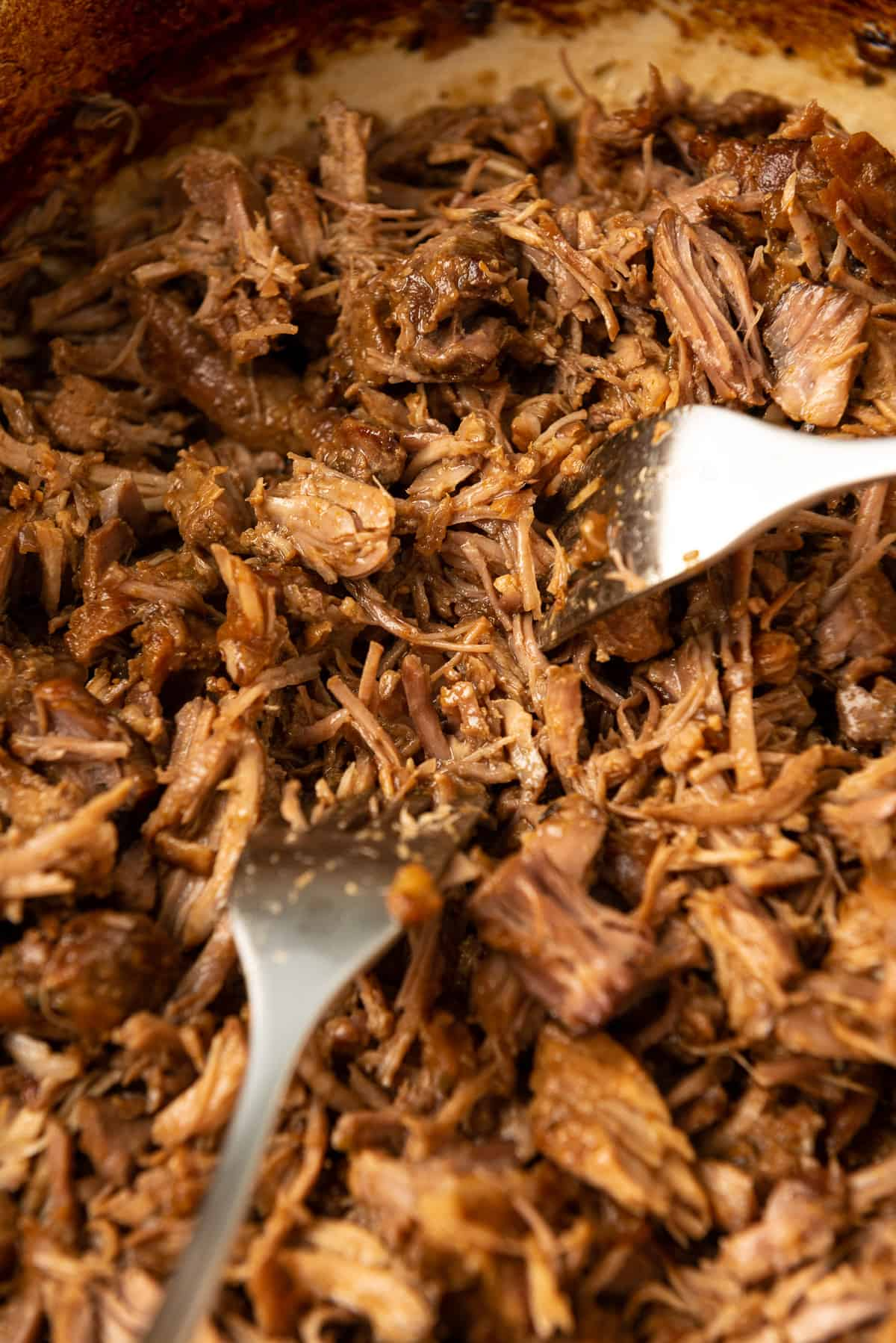 The tender pork is shredded with two forks into the sauce in the Dutch oven.