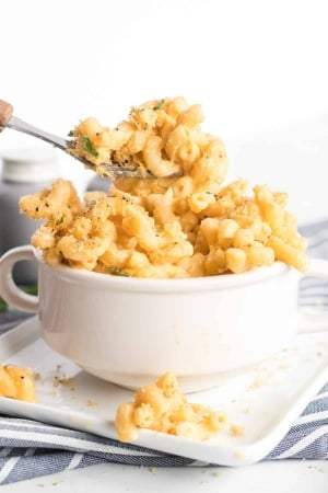 An individual serving of Stovetop Macaroni and Cheese being scooped up with a fork from a small white bowl.