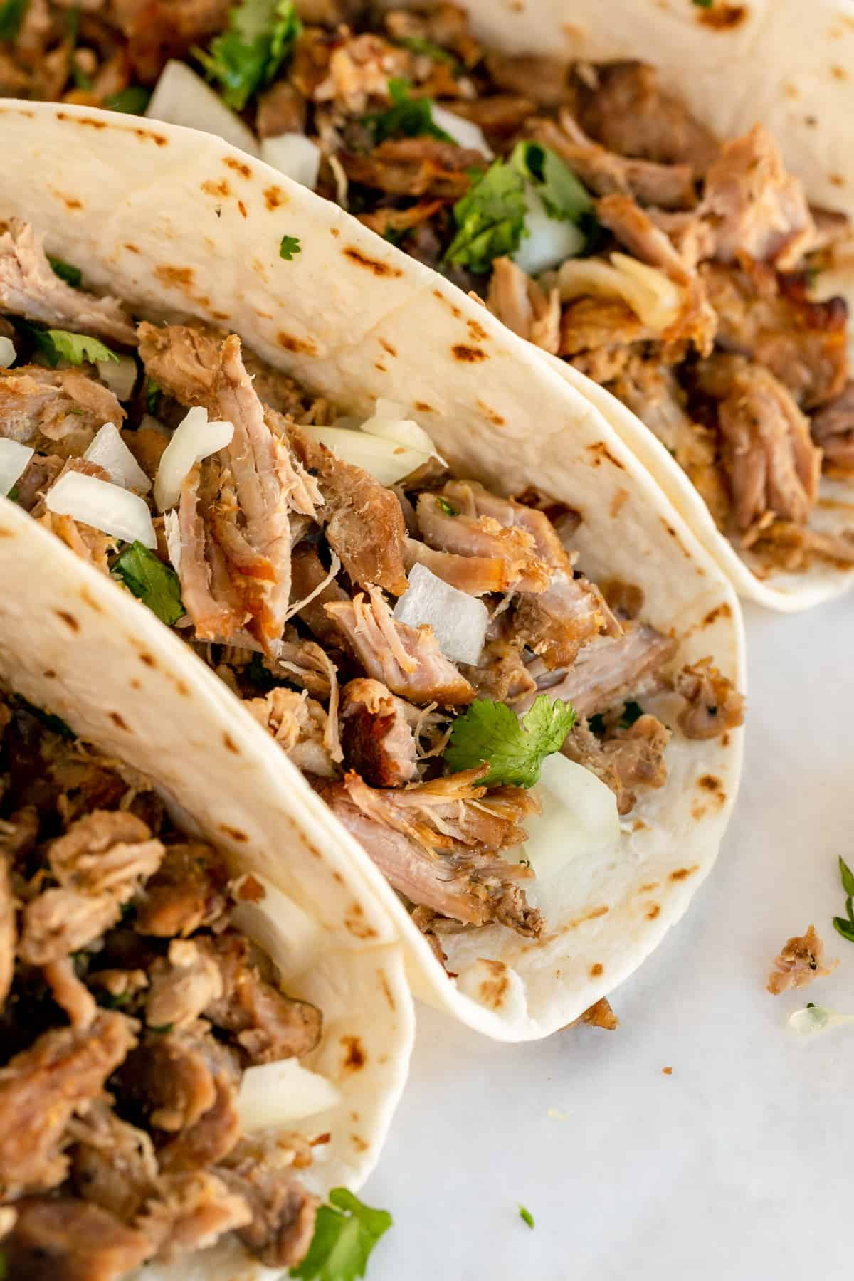 A closeup of three carnitas tacos.