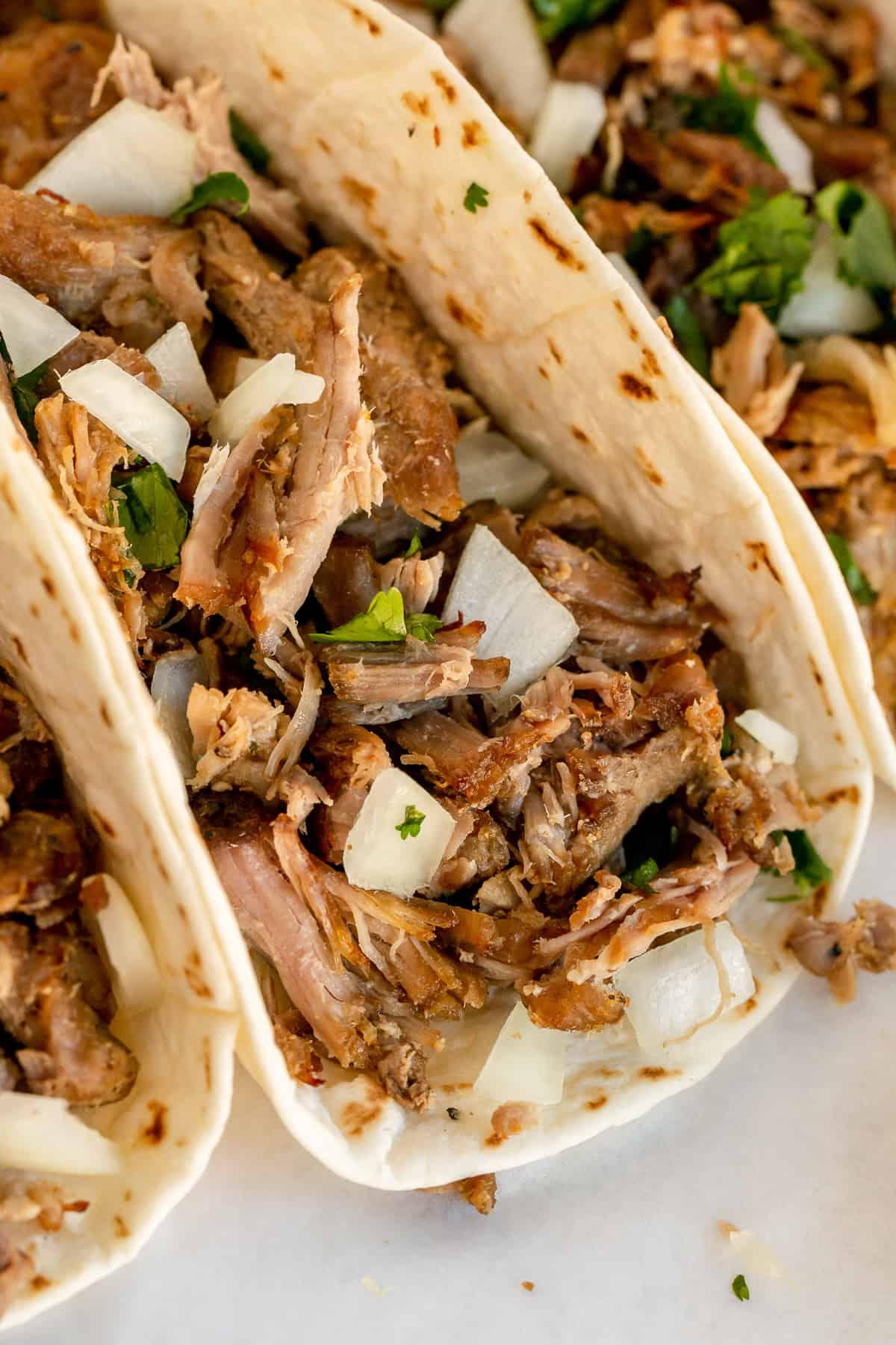 A closeup of a carnitas taco.
