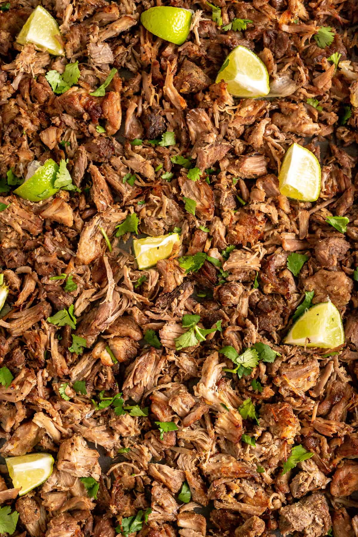 A closeup of pork carnitas with lime.