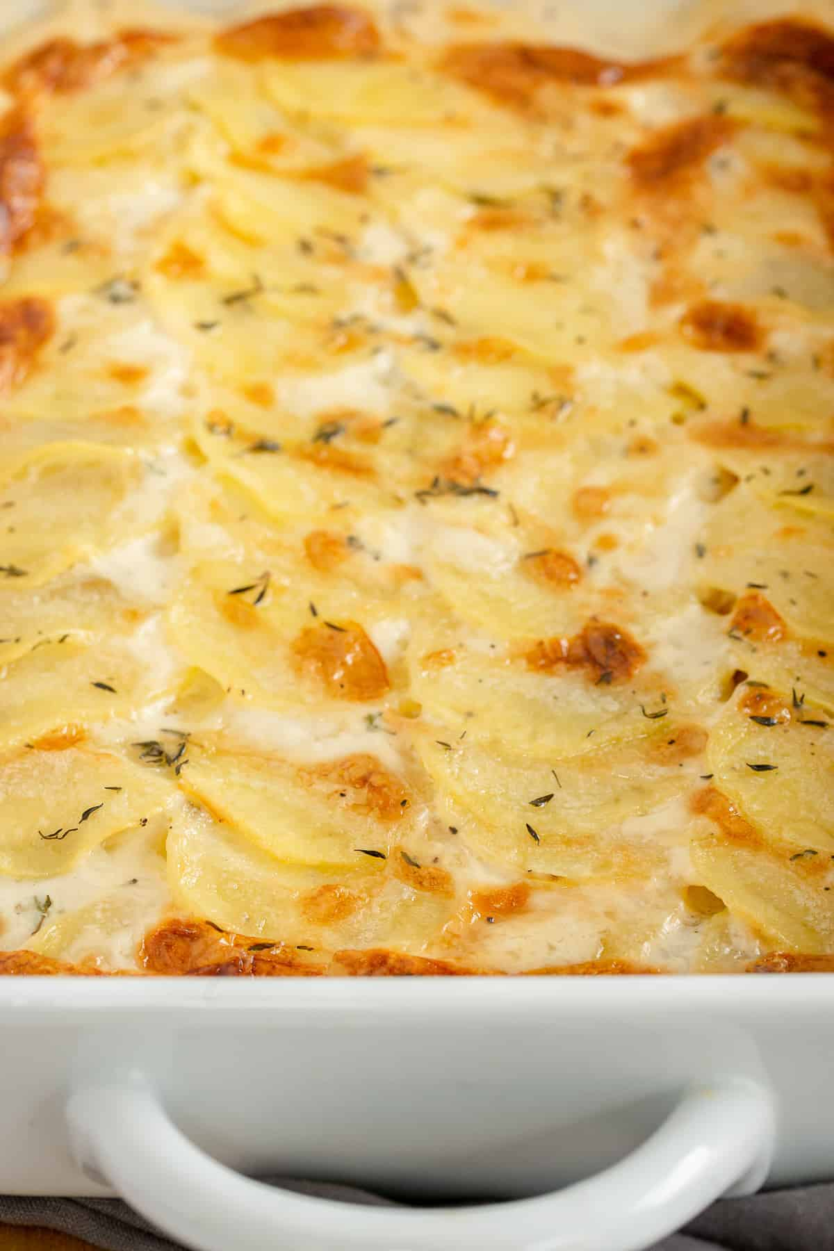 A close up of scalloped potatoes in a white baking dish.